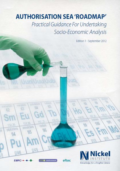 Socio Economic Analysis (SEA) support on Nickel Sulphate report cover